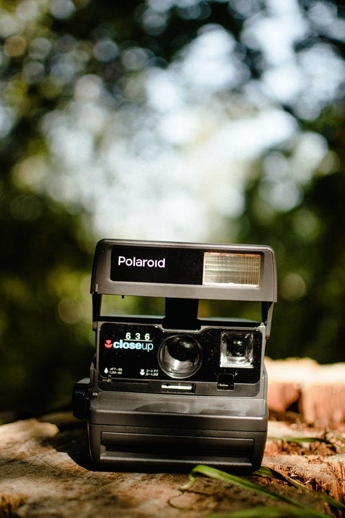 Black and Silver Polaroid Camera on Brown Rock