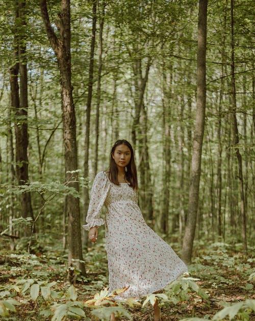Gratis lagerfoto af blad, efterår, falde, kjole