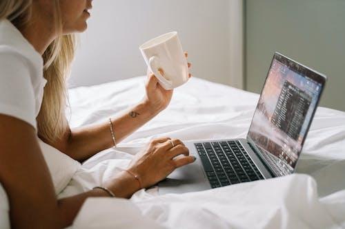 互聯網, 休閒, 咖啡, 在家工作 的 免費圖庫相片