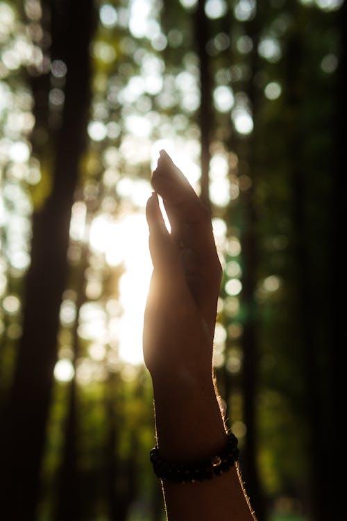 คลังภาพถ่ายฟรี ของ การท่องเที่ยว, การทำสมาธิ, การผจญภัย, การอธิษฐาน