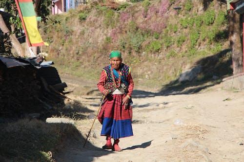 Kostnadsfri bild av barn, flicka, grupp