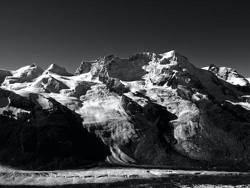 คลังภาพถ่ายฟรี ของ การแช่แข็ง, ขาวดำ, ดำและขาว