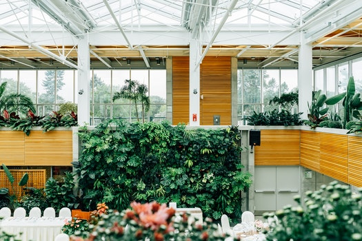Free stock photo of display, plants, design, structure