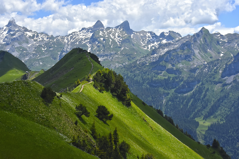 Free stock photo of beautiful nature, green, green ridge, landscape
