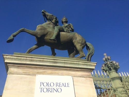Free stock photo of blue sky, cancello, horse