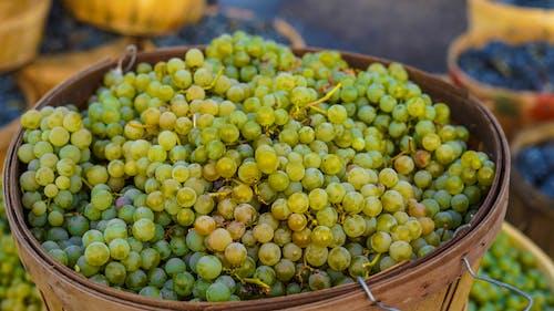Grapes on a Basket