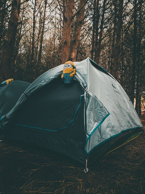 Free stock photo of adventurer, beauty in nature, camping