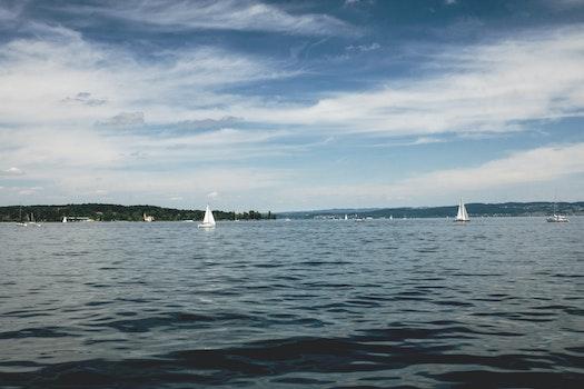 Free stock photo of water, boats, sailboats, lake