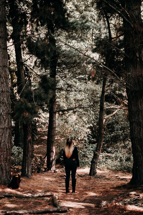 Woman in Black Long Sleeve Shirt Standing in the Middle of Forest