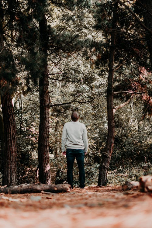 Man in White Long Sleeve Shirt Standing in Front of Brown and Green Trees