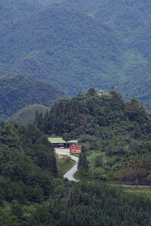 Green forest covering huge mountain range