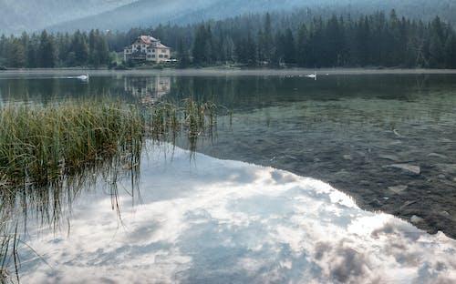 dağ evi, doğa, göl kenarı, göller içeren Ücretsiz stok fotoğraf