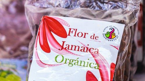 Foto stok gratis festival tradisional, jamaica