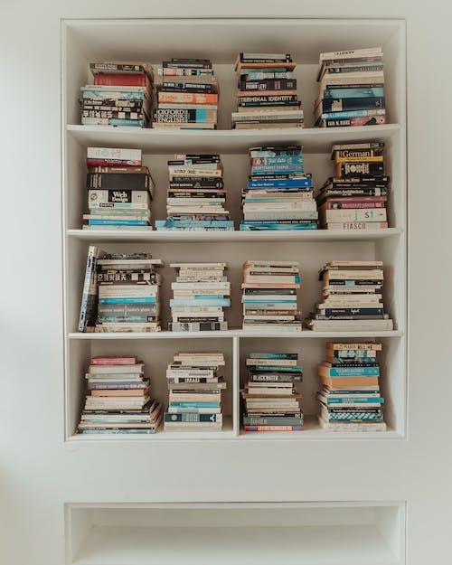 Kostenloses Stock Foto zu auftrag, ausbildung, bibliothek