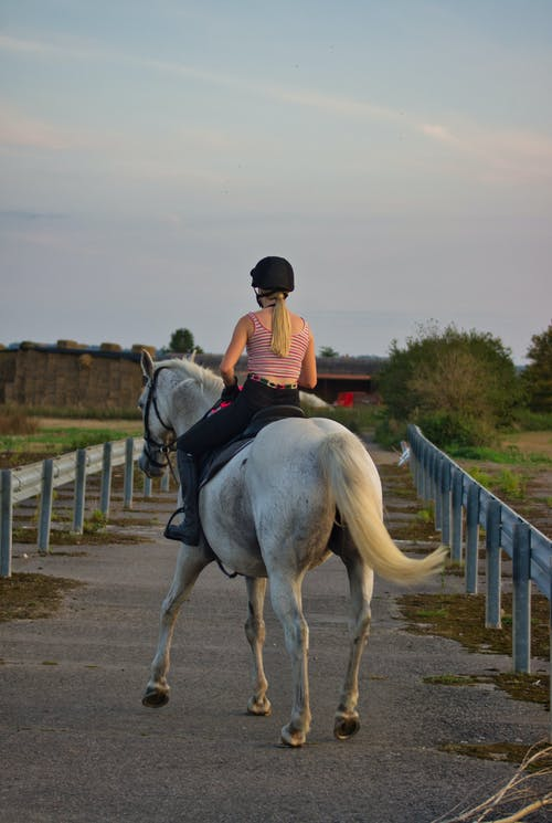 Unrecognizable female equestrian riding horse on road in countryside