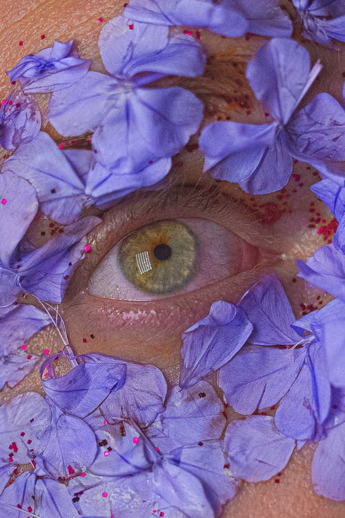 Man eye surrounded with blue flowers petals