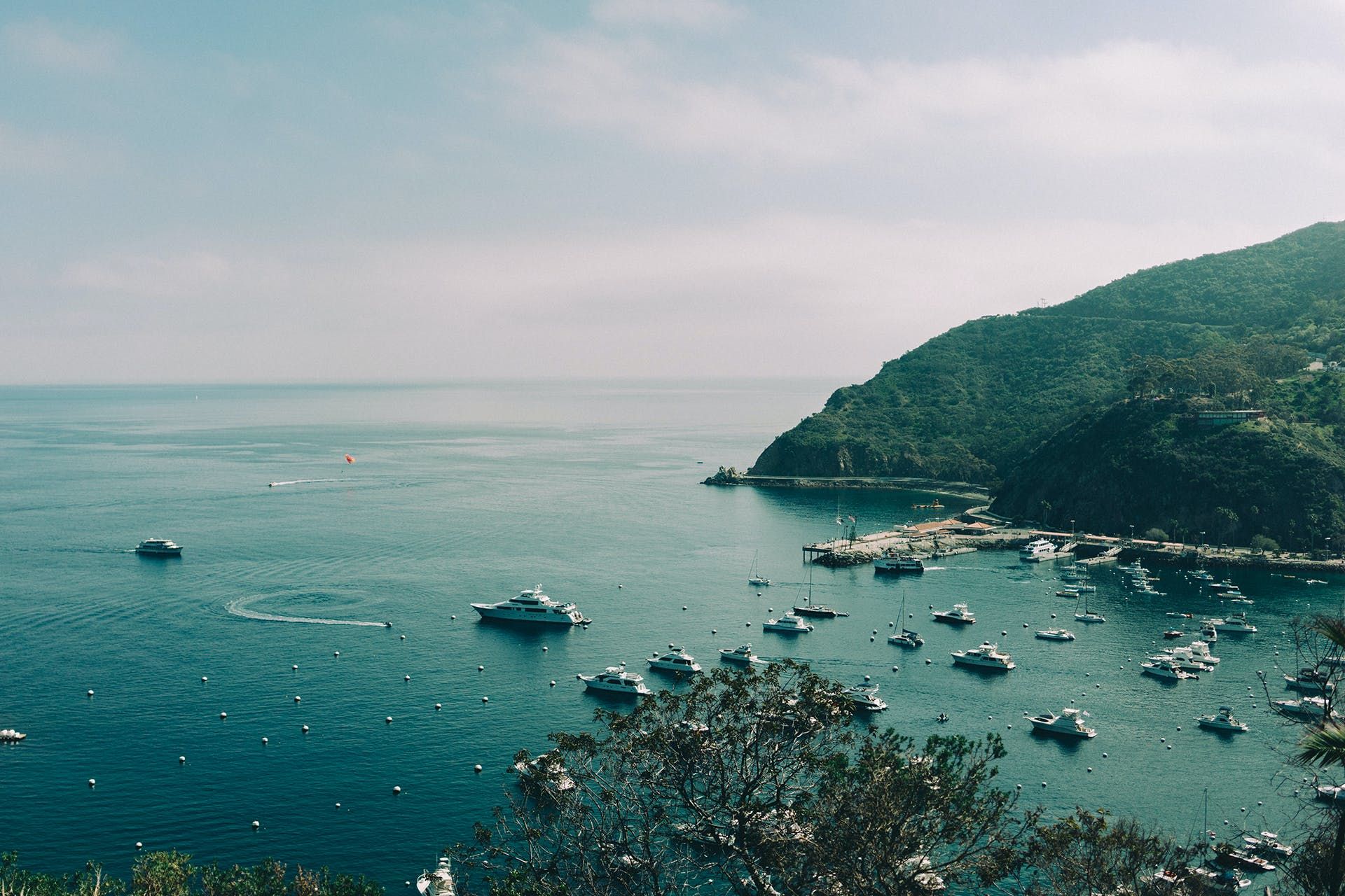 Free stock photo of bay, boats, port, yachts