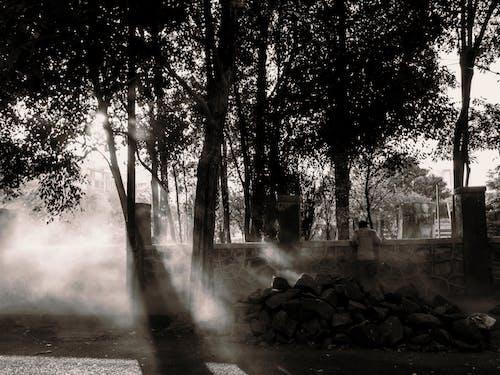 Foto stok gratis alam, bebatuan, cahaya, cahaya matahari