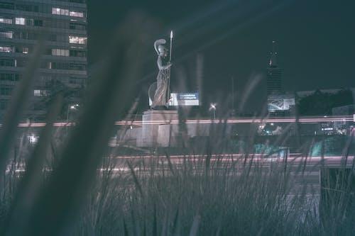 Foto stok gratis bundaran, garis cahaya, jejak cahaya, kehidupan kota