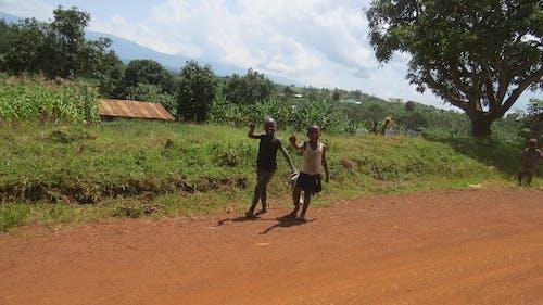 乌干达, 孩子, 社區, 非洲 的 免费素材照片