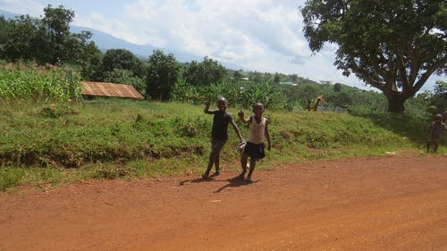 Fotobanka sbezplatnými fotkami na tému Afrika, deti, komunita, uganda