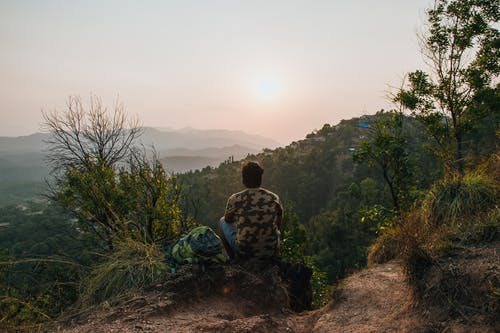Back biew of anonymous male observing picturesque mountains and forest on cliff with trees in sunrise