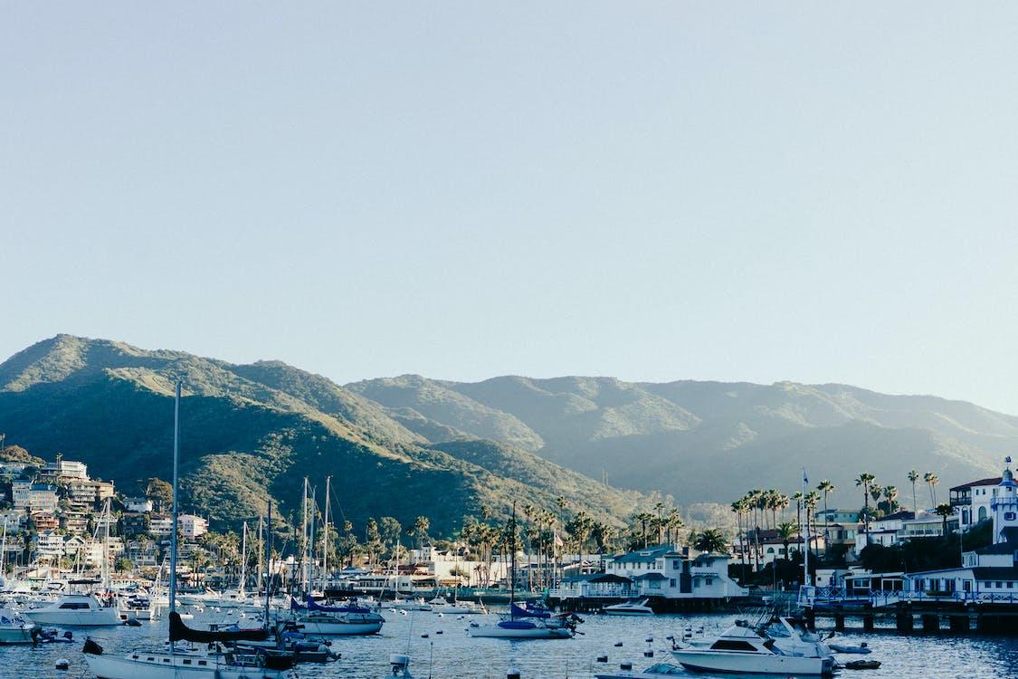 båtar, bergen, hamn