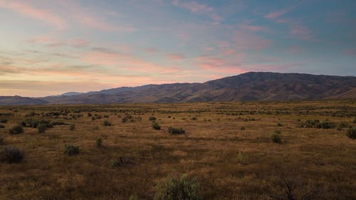 Panorama of spectacular dry field with shrubs in front of mountains under colorful sky