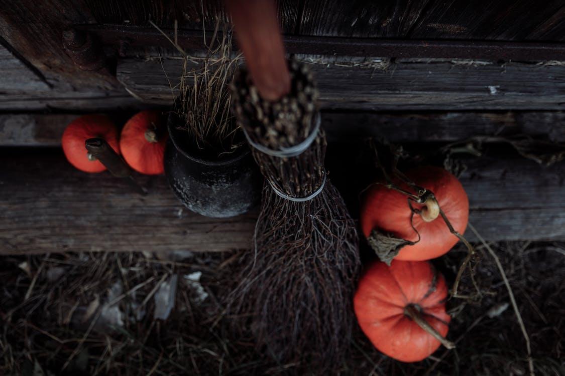 Broom and Pumpkins