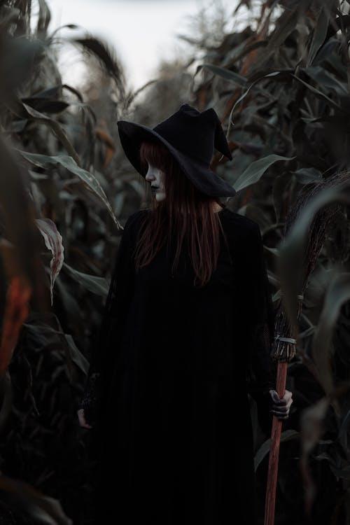 Witch in a Corn Field