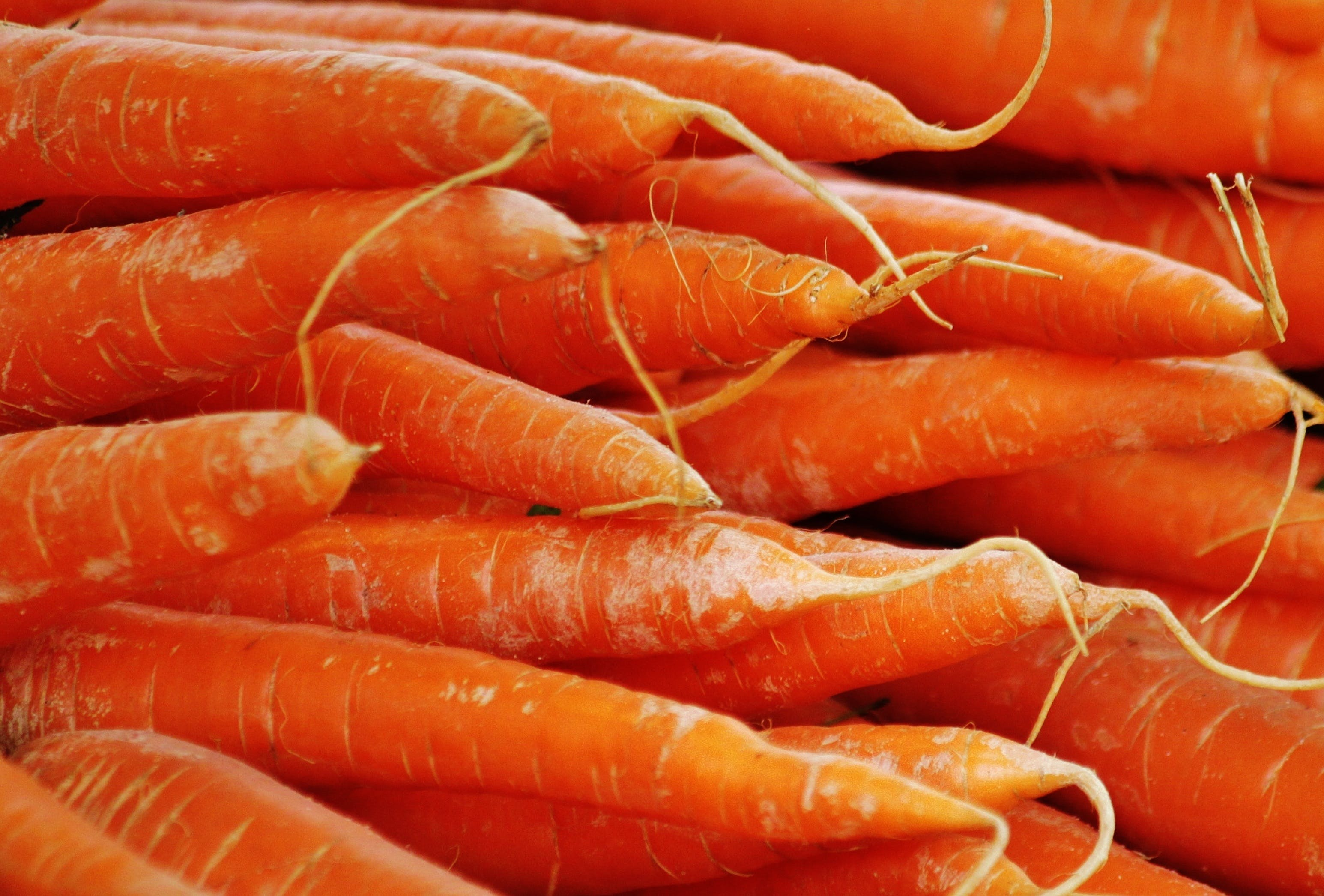 Orange Carrots