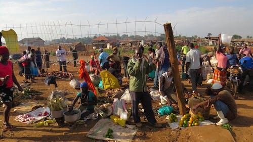 Fotobanka sbezplatnými fotkami na tému Afrika, kampala, trh, uganda