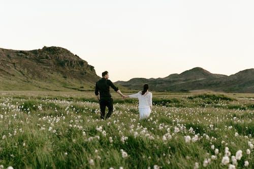 건초지, 걷고 있는 커플, 검은색, 검정의 무료 스톡 사진