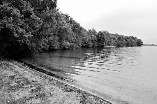 Free stock photo of nature, beach, water, summer