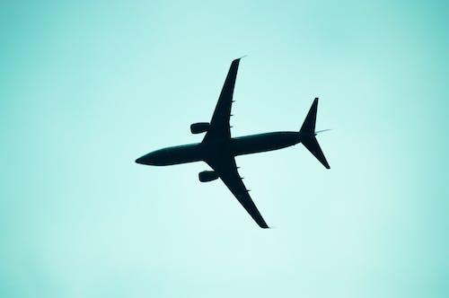 Immagine gratuita di aereo, aeroplano, aeroporto, ala