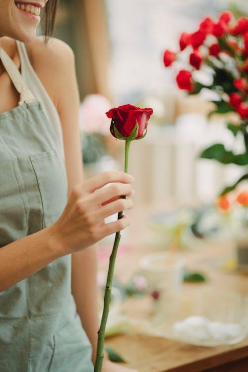 Crop florist with rose in floral shop