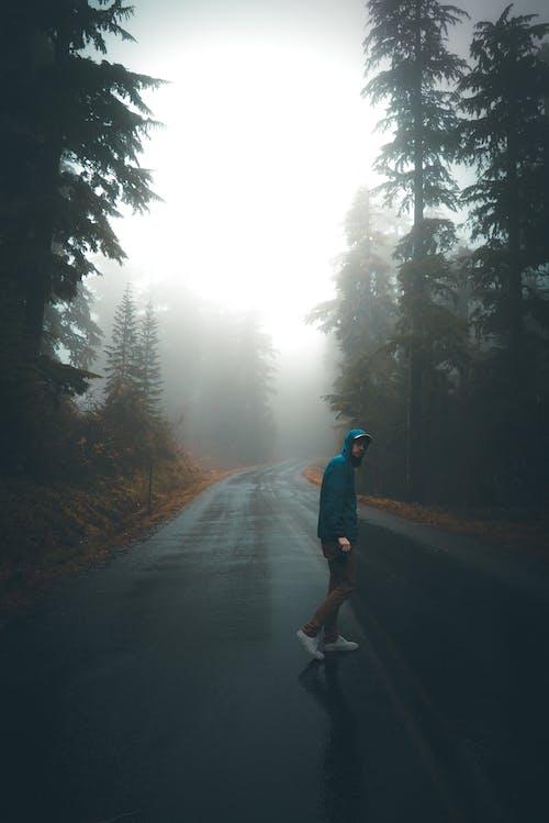 Man in Blue Jacket Walking on Road Between Trees