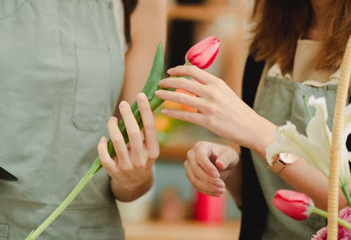 Unrecognizable female florists wearing aprons with pink tulip in hands standing in floral store on blurred background while arranging flowers