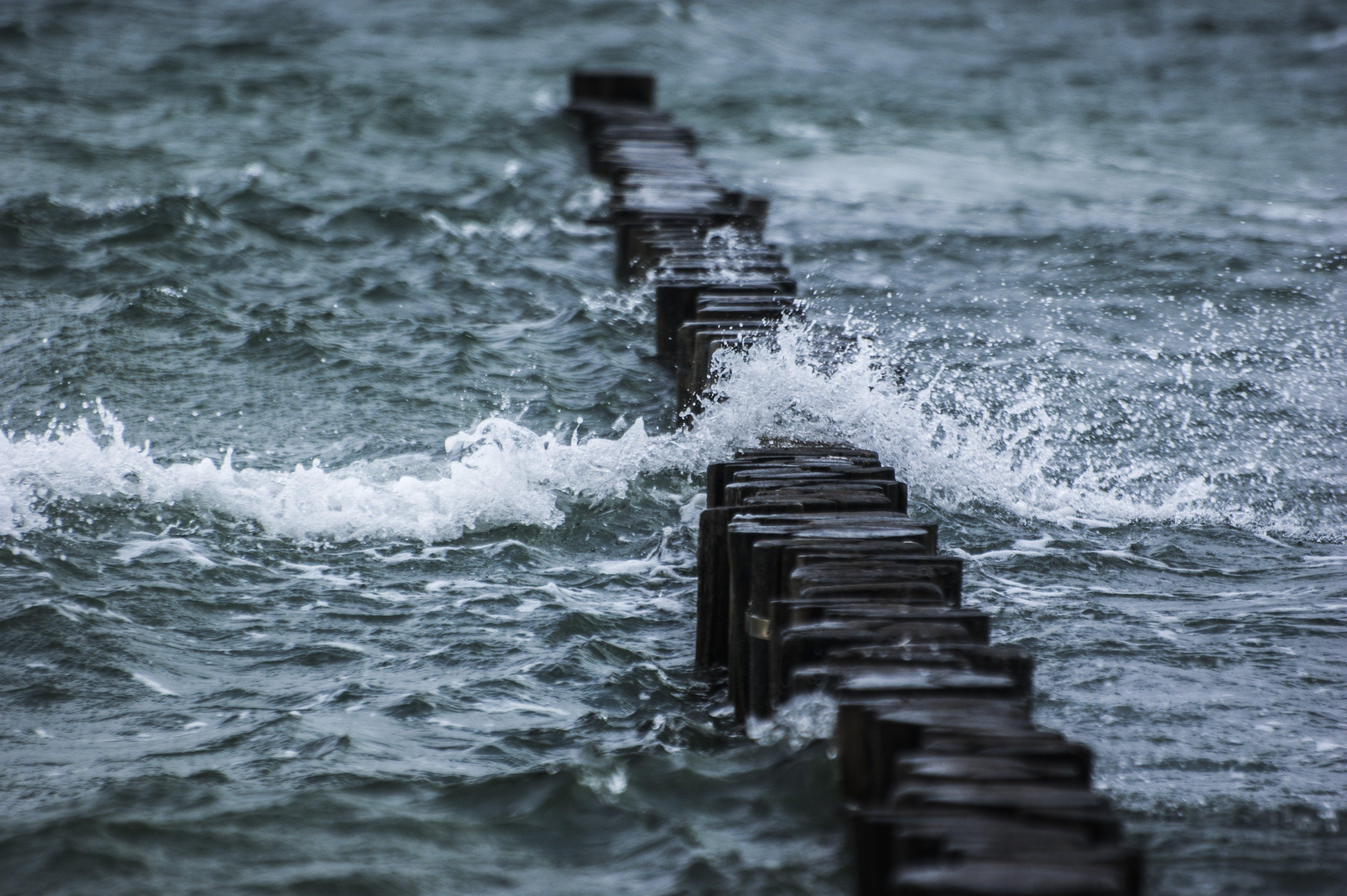 Foto profissional grátis de água, com muito vento, dique, mar