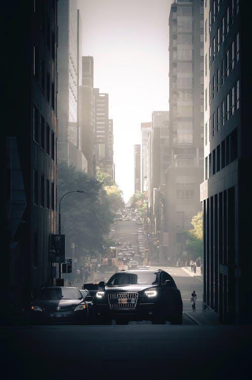 Gratis stockfoto met appartementsgebouwen, architectuur, auto, binnenstad