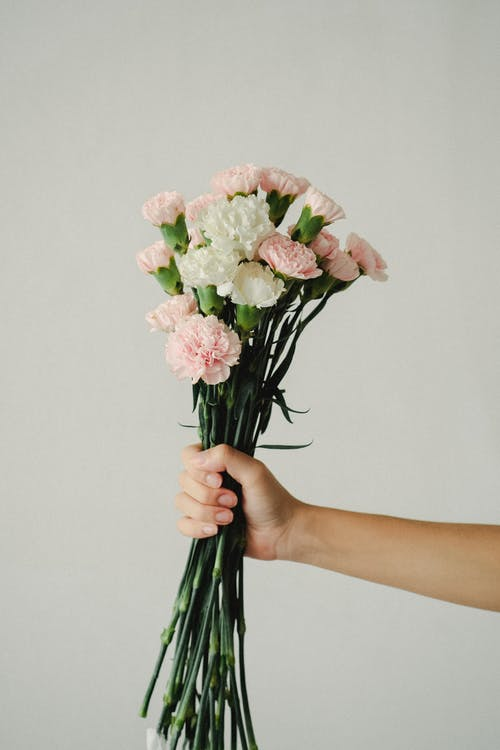 Crop unrecognizable woman holding bunch of light carnations