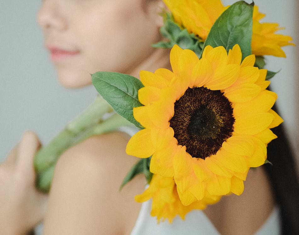 Crop anonymous woman in casual clothes holding bright sunflowers on shoulder and showing to camera against blurred background