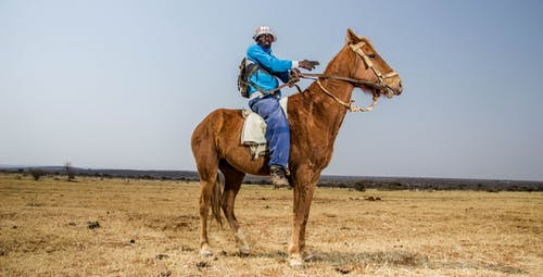 Woman in Blue Jacket Riding Brown Horse