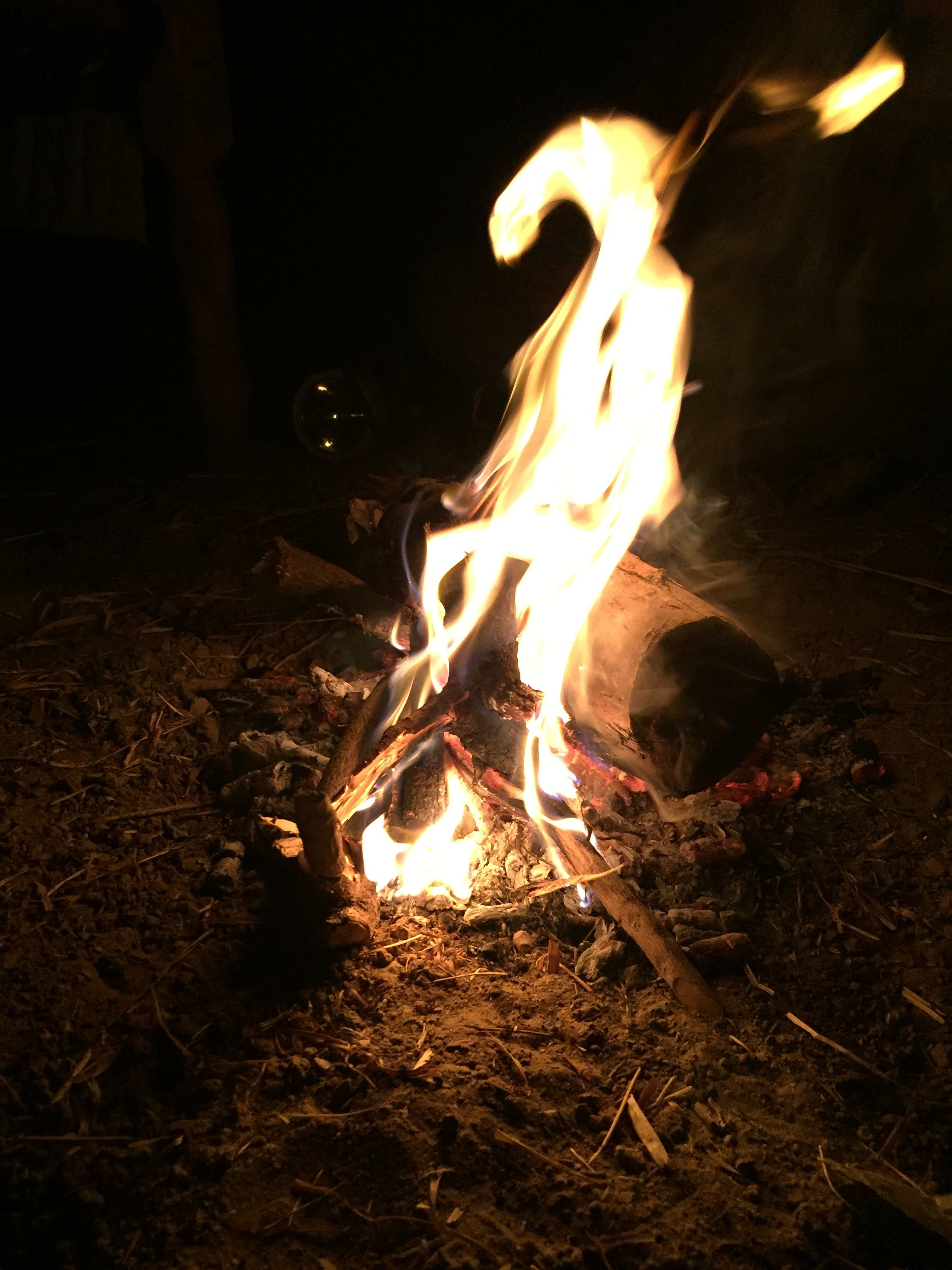 Free stock photo of campfire, camping, farm, fire