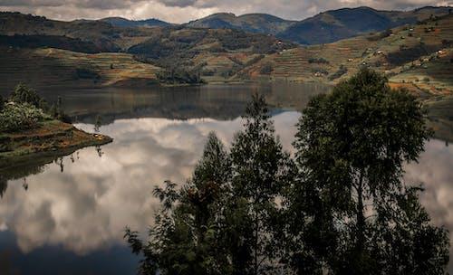 Free stock photo of jungle, lake, mountains