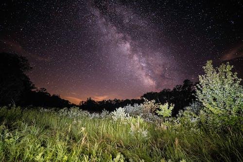 Δωρεάν στοκ φωτογραφιών με αστέρια, αστροφωτογραφία, γαλαξίας, γρασίδι