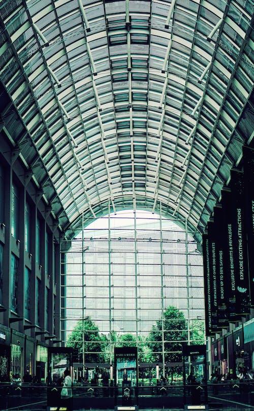 Immagine gratuita di acciaio, alberi, architettura, articoli di vetro