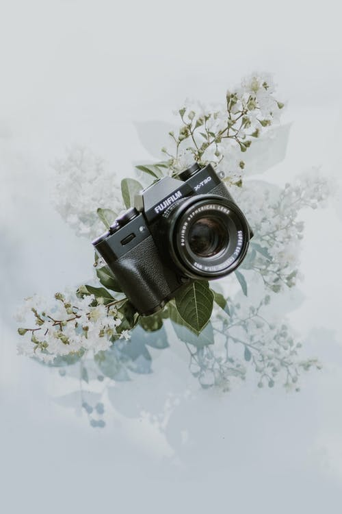 Black and Silver Dslr Camera on White and Green Floral Textile