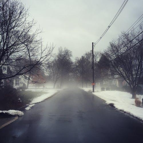 Free stock photo of empty street, fog, melting snow