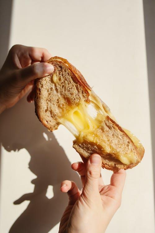 Person, Die Brot Mit Käse Hält